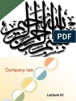 Lecture01 Company Law
