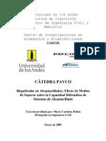 biopolitica en alcantarillas.pdf