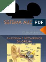 SistemaAuditivo_SensaçãoPercepção