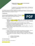 convenio de trabajo dirigido.pdf