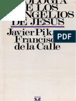 Pikaza Xabier Teologia De Los Evangelios De Jesus Afr Sig Biblioteca De Estudios Biblicos 006 Cal.pdf