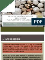 BIOESTRATIGRAFÍA-SECUENCIAL-sem2