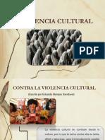 Diapositivas de v. Cultural