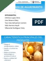 Proyecto de Mermelada de Aguaymanto
