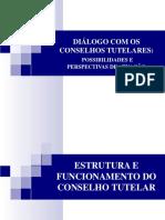Conselho Tutelar Estrutura e Funcionamento Digiácomo