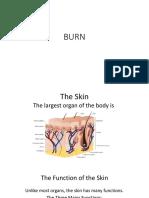 burn rift