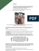 Química - Apostila 1 - Artigos para Leitura Complementar