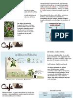 Proyecto Café