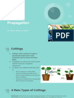 ag science - student cutting propagation example 1