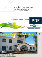 Producao-de-mundas-de-Fruteiras-Persio-Sandir.pdf