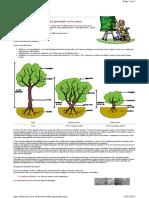 Quelques généralités sur les arbres
