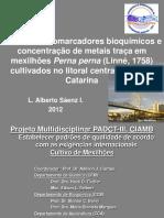 Seminario - Alberto Saenz 05-06-12