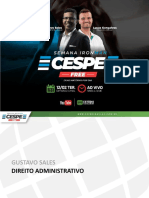 GustavoSales_DirAdm_IronMan.pdf