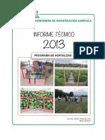 3.-Informe-Técnico-2013-Programa-de-Hortalizas.pdf