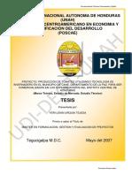 3. Informe Técnico 2013 Programa de Hortalizas