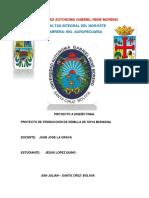 PROYECTO DE PRODUCCION DE SEMILLA DE SOYA.docx