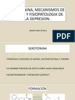 Serotonina, Mecanismos de Accion y Fisiopatologia