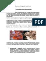Articles-19461 Recurso Doc