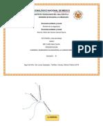 mgg_Line de tiempo_economia Solidaria_T1_M1.docx