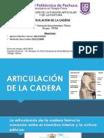 ARTICULACIÓN-DE-LA-CADERA.pptx