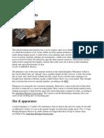 Platypus Facts