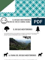 El bosque mediterráneo.pptx
