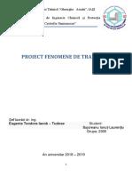 Proiect FDT(fenomene de transfer).docx