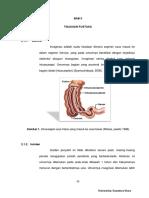 invaginasi.pdf