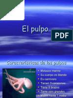 elpulpo-090305141002-phpapp02