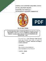 Plan de Tesis en acción biosida de Piñon e Higuerilla