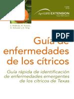 Guia-rapida-de-identificacion CITRICOS.pdf