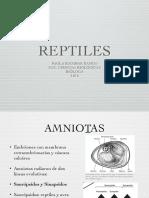 Reptiles I.pdf