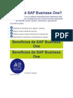 Por Qué SAP Business One