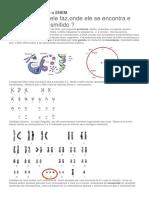 Genética Molecular e o ENEM