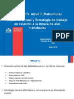 11 Drosophilla Suzukii en Chile Marcos Muñoz INDAP