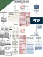 Mapa Conceptual Modelo Humanista