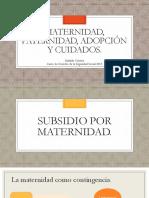 Presentaci+¦n Power Point - Subsidios por maternidad, Paternidad, Adopci+¦n y Cuidados