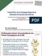 01 - Presentacion de La Estrategia Regional BA_Barcos