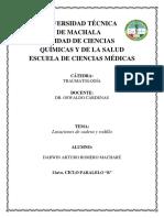 Traumatologia Lux Rodilla y Cadera