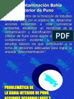 Bahía Interior Del Titicaca PELT