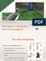 sexdetermination-151214225738