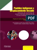informe indigenas y desplazamiento.pdf