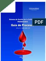 Guia de Procesos Pronahebas