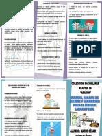 TRIPTICO NORMAS DE LABORATORIO.docx