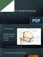 ECOGRAFIA TRANSFONTANELAR 1.pdf