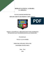estimacion estado de bofedales.pdf