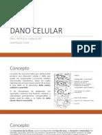 Patología básica de la lesión celular