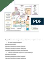 Preguntas Tema 1Farmacología General. Farmacodinamia.interacciones Fármaco-receptor.