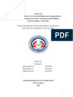 ASKEP MATERNITAS FIX.docx