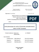 exemple 1.pdf